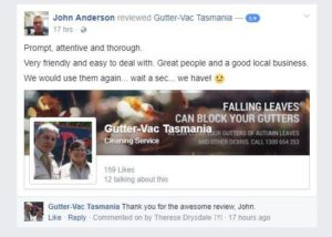 5 Star Gutter Cleaning Review from Kanwal Customer