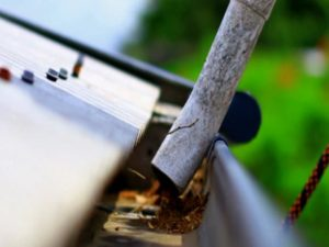 Why getting your gutters cleaned is so important!