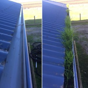 Gutter-Vac Knox provides Before & After Images