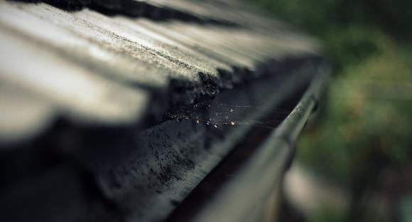 4 Reasons Why You Should Hire a Professional to Clean Your Gutters