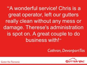 A Happy Devonport Gutter Cleaning Customer