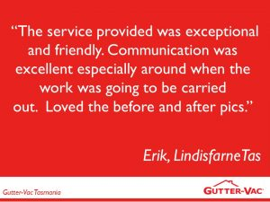 Another Great Gutter Cleaning Customer Satisfied With the End Results