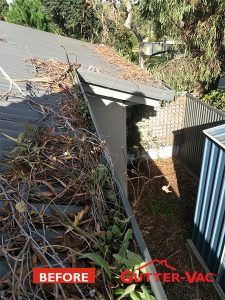 Can You Keep on Top of Your Gutter Cleaning?
