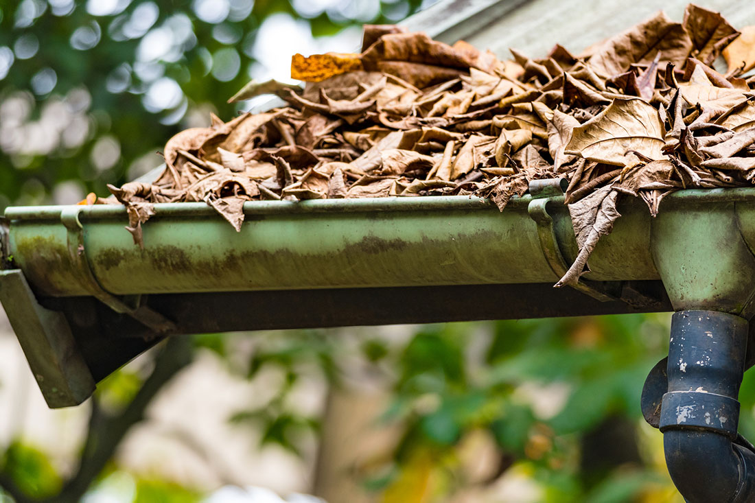 Six hidden threats of blocked gutters