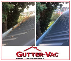 Regular Gutter Cleaning Required With Trees Near Your Property.