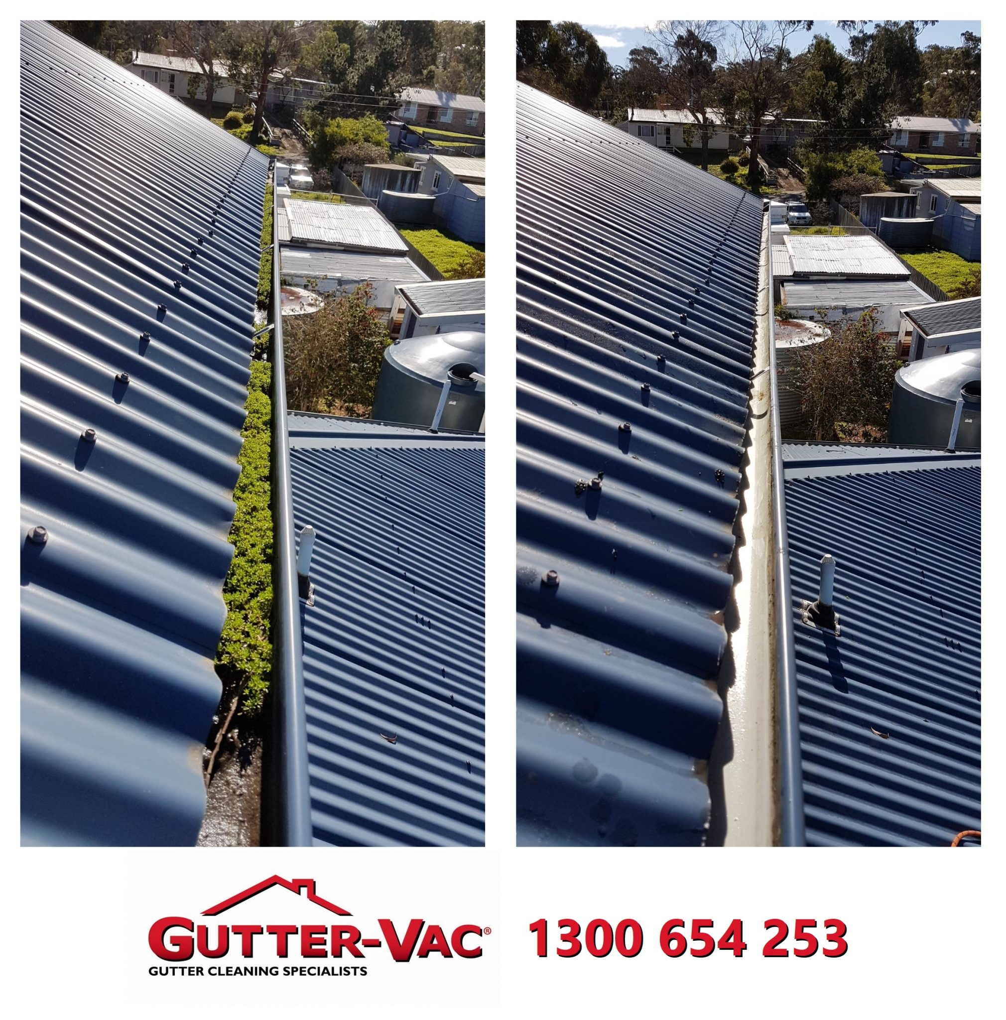 Minimal Trees or No Trees Around?… A Gutter Clean Is a Good Idea