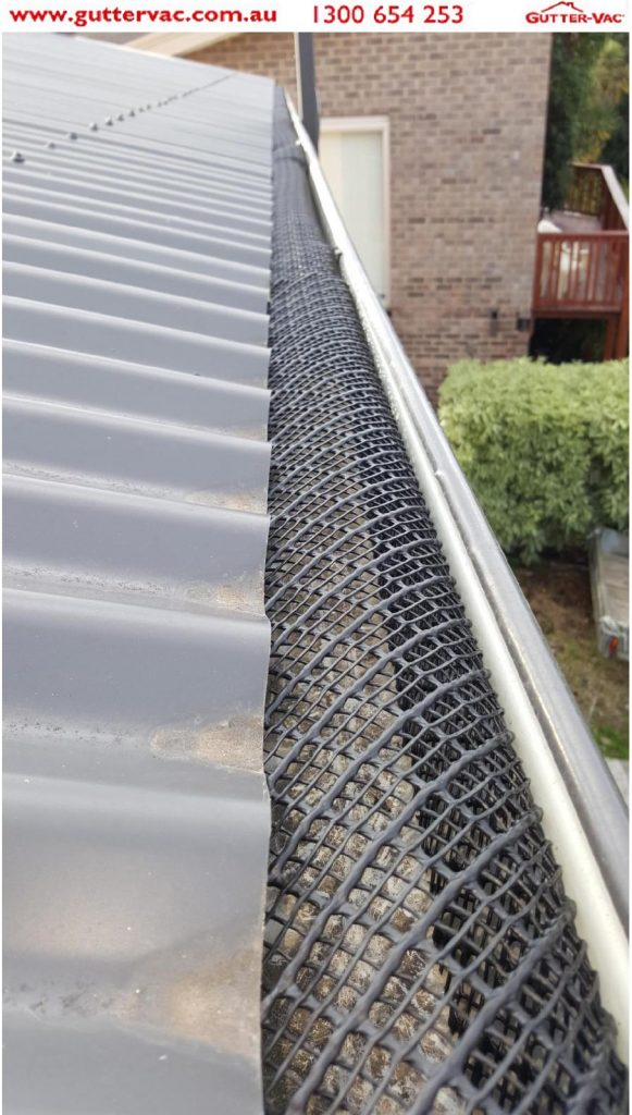 Gutter Guard installed to the gutter for bird proofing.