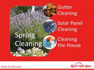 What Jobs Need Doing In Spring Time?