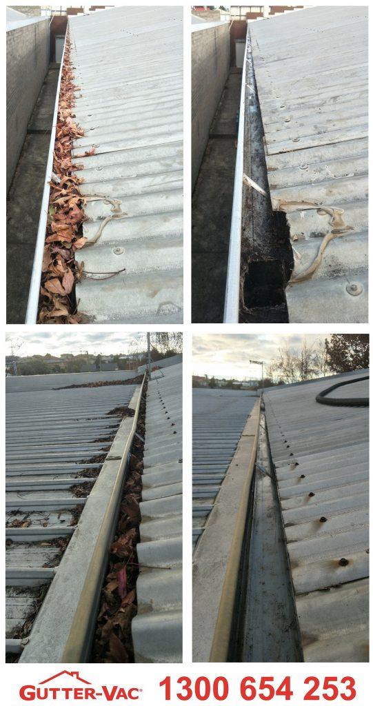 Commercial Gutter Cleaning in Devonport