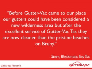 A Customers Version of Their Gutter-Vac Cleaning Experience