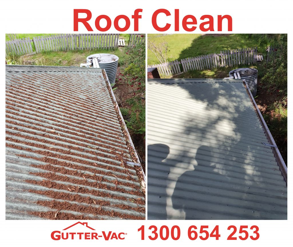 Gutter clean and roof clean