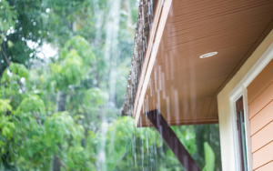 How you can use your gutters to collect rainwater.