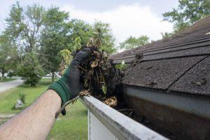 Your Seasonal Guide to Home Maintenance