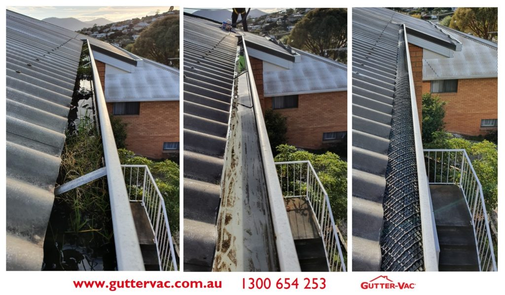 Gutter-Vac Tasmania Bird Proofing