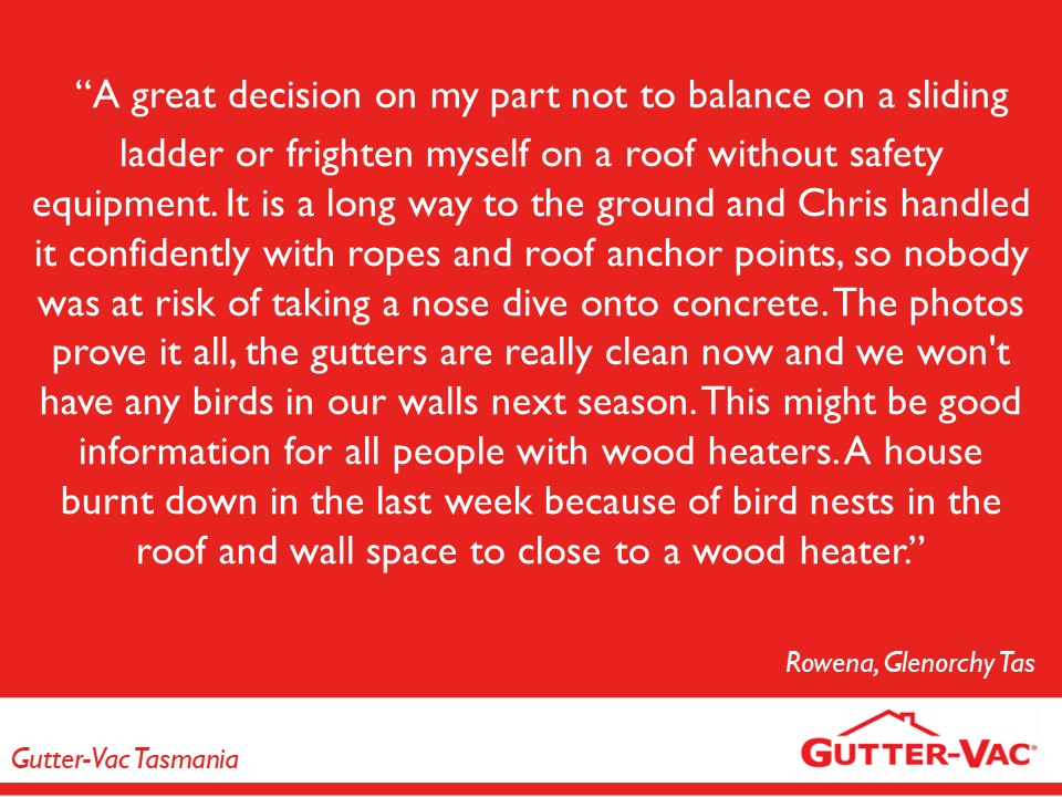 Bird Proofing Gutters Safely