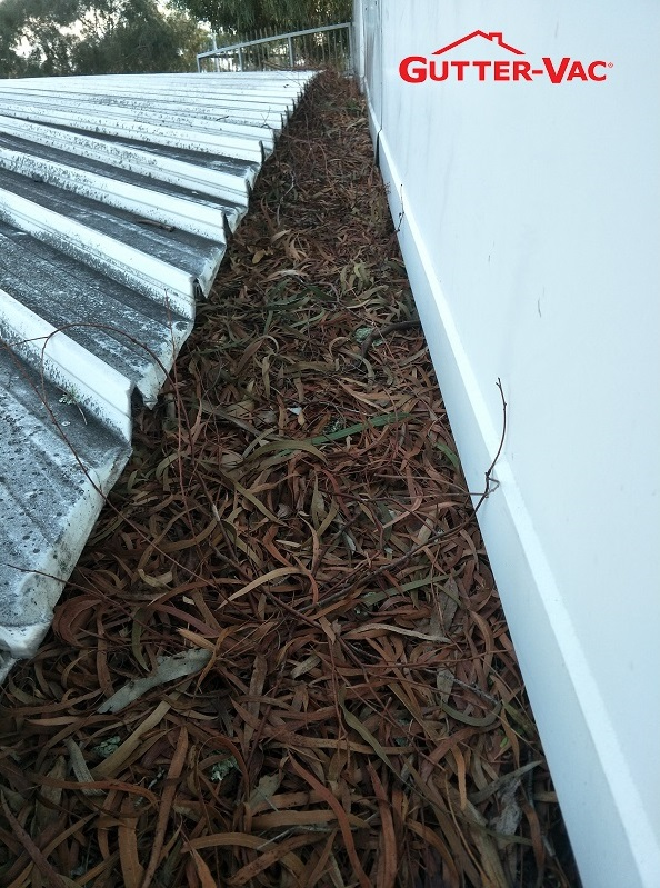 Commercial Gutter Cleaning Rosny Park