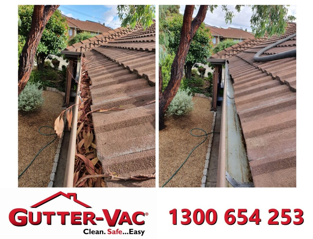 Gutter cleaning Lutana