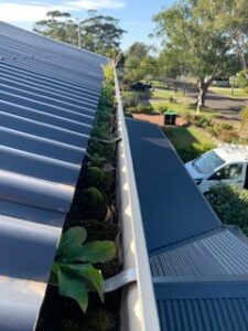 Minimal Trees or No Trees Around?… A Gutter Clean Is still a Good Idea