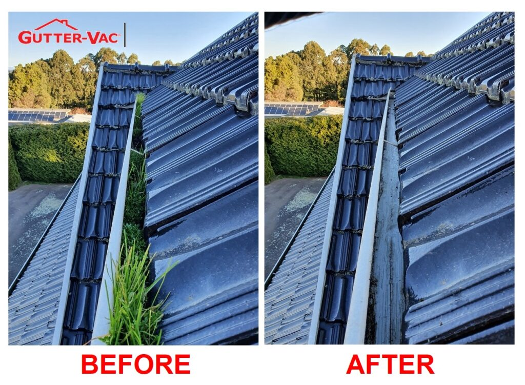 Gutter Cleaning Wynnyard