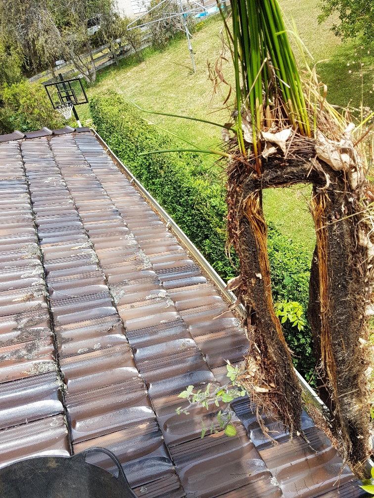 Gutter Cleaning In Margate